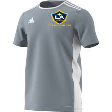 quality design 262ff aadab 2018 LA Galaxy Adidas Entrada18 Jersey - Youth
